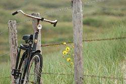 Rad fahren in Ostfriesland