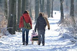 Wadlspaziergang im Winter