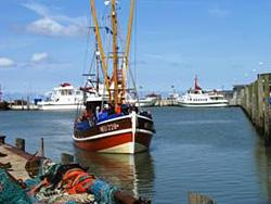 Krabbenkutter im Hafen von Neuharlingersiel